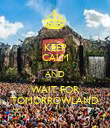 KEEP CALM AND WAIT FOR TOMORROWLAND - Personalised Poster large