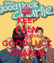 KEEP CALM AND WATCH GOOD LUCK CHARLIE - Personalised Poster large