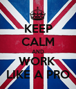 KEEP CALM AND WORK  LIKE A PRO - Personalised Poster large