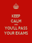 KEEP CALM AND YOU'LL PASS YOUR EXAMS - Personalised Poster large