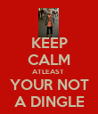 KEEP CALM ATLEAST  YOUR NOT A DINGLE - Personalised Poster large