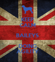 KEEP CALM BAILEYS DOING AGILITY - Personalised Poster large