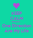 KEEP CALM Because... One Direction Are My Life - Personalised Poster large