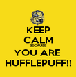 KEEP CALM BECAUSE YOU ARE  HUFFLEPUFF!! - Personalised Poster large
