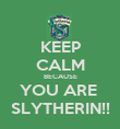 KEEP CALM BECAUSE YOU ARE  SLYTHERIN!! - Personalised Poster large