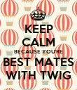 KEEP CALM BECAUSE YOU'RE BEST MATES WITH TWIG - Personalised Poster large