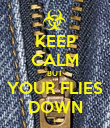 KEEP CALM BUT YOUR FLIES DOWN - Personalised Poster large