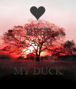 KEEP CALM CAUSE I LOVE MY DUCK - Personalised Poster large