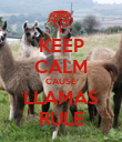 KEEP CALM CAUSE LLAMAS RULE - Personalised Poster large