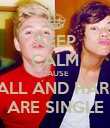 KEEP CALM CAUSE NIALL AND HARRY ARE SINGLE - Personalised Poster large