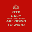 KEEP CALM CAUSE THE DYNAMICS ARE GOING TO WID :D - Personalised Poster large