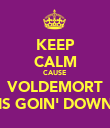 KEEP CALM CAUSE VOLDEMORT IS GOIN' DOWN - Personalised Poster large