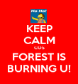 KEEP CALM COS FOREST IS BURNING U! - Personalised Poster large