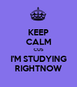 KEEP CALM CUS I'M STUDYING RIGHTNOW - Personalised Poster large