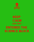 KEEP  CALM CUZ LUCY ENTERED THE  SCIENCE BLOCK - Personalised Poster large