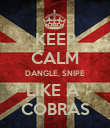 KEEP CALM DANGLE, SNIPE LIKE A  COBRAS - Personalised Poster large