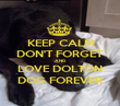 KEEP CALM DON'T FORGET AND LOVE DOLTON DOG FOREVER - Personalised Poster large