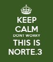 KEEP CALM DONT WORRY THIS IS NORTE.3  - Personalised Poster large