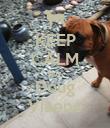 KEEP CALM Hug Doug Viaene - Personalised Poster large