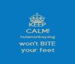 KEEP CALM! hulamonkeydog won't BITE your feet - Personalised Poster large