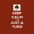 KEEP CALM I AM JUST A TURD - Personalised Poster large