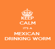 KEEP CALM IT'S A MEXICAN  DRINKING WORM - Personalised Poster large