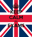 KEEP CALM it's EXAMS  - Personalised Poster large