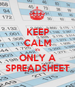 KEEP CALM it's ONLY A SPREADSHEET - Personalised Poster large