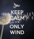 KEEP CALM IT'S ONLY WIND - Personalised Poster large