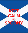 KEEP CALM ITS SPOONY  - Personalised Poster large