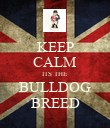 KEEP CALM ITS THE BULLDOG BREED - Personalised Poster large