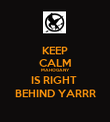 KEEP CALM MAHOGANY  IS RIGHT  BEHIND YARRR - Personalised Poster large