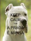 KEEP CALM QUE A PRAGA É MANSA - Personalised Poster large