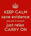 KEEP CALM save evidence you are in control just relax CARRY ON - Personalised Poster large
