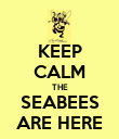 KEEP CALM THE SEABEES ARE HERE - Personalised Poster large