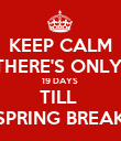 KEEP CALM THERE'S ONLY  19 DAYS  TILL  SPRING BREAK - Personalised Poster large