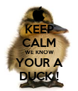 KEEP CALM WE KNOW YOUR A DUCK ! - Personalised Poster large