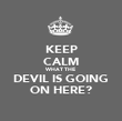 KEEP CALM WHAT THE DEVIL IS GOING ON HERE? - Personalised Poster large