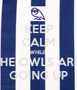 KEEP CALM WHILE  THE OWLS ARE  GOING UP - Personalised Poster large