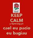 KEEP CALM y Gymraeg yn cael eu pacio eu bagiau - Personalised Poster large