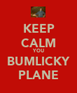 KEEP CALM YOU BUMLICKY PLANE - Personalised Poster large