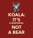 KOALA: IT'S A MARSUPIAL NOT A BEAR - Personalised Poster large