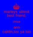 marleys ultimit best friend, chloe ann caitlin,luv ya too - Personalised Poster large