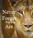 Never           Forget           Who You                      Are            - Personalised Poster large