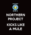 NORTHERN PROJECT  KICKS LIKE A MULE - Personalised Poster large