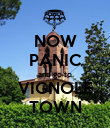 NOW PANIC and go to VIGNOLE TOWN - Personalised Poster large
