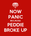 NOW PANIC BECAUSE PEDDIE BROKE UP - Personalised Poster small