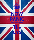 NOW PANIC you just met  The CYS - Personalised Poster large