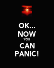 OK... NOW YOU CAN PANIC! - Personalised Poster large