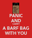 PANIC AND CARRY A BARF BAG WITH YOU - Personalised Poster large